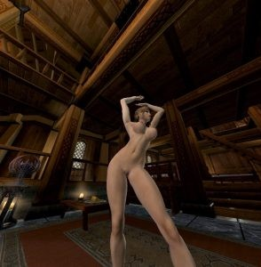 VR Porn in Skyrim, a handy guide for beginners Skyrim vr porn blog virtual reality