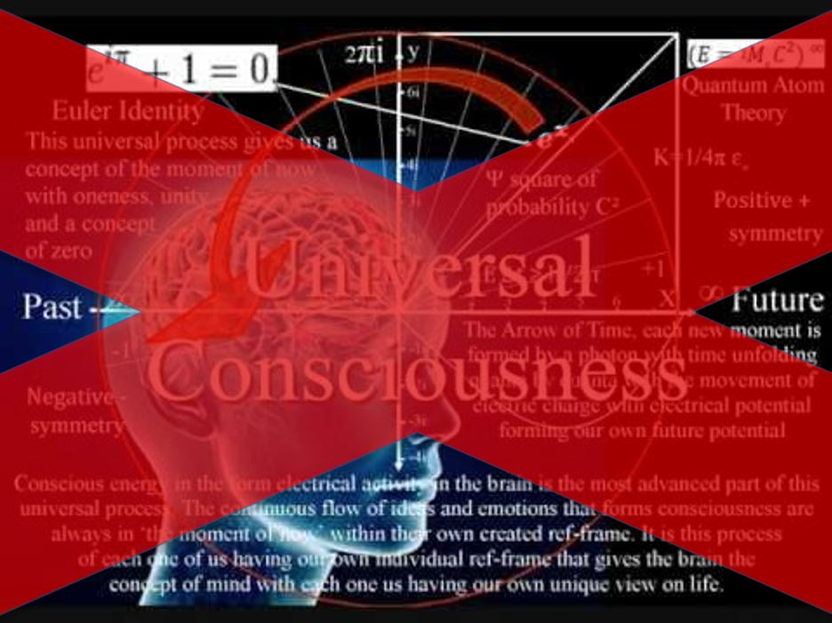 explaining subjective consciousness In this book, todd feinberg and jon mallatt attempt to demystify consciousness—to naturalize it, by explaining that the subjective, experiencing aspects of consciousness are created by natural brain processes that evolved in natural ways.