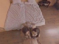Hot roommates enjoy their great sex Amber Nevada Julia Roca VirtualPorn360 vr porn video vrporn.com virtual reality