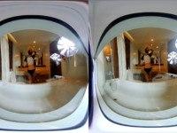 Toilet And Bathroom Voyeur VRPussyVision vr porn video vrporn.com virtual reality
