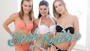 Birds Of A Feather - Foursome with Three Slutty College Roommates Alexis Crystal Billie Star Viktoria Daniels BaDoinkVR vr porn video vrporn.com virtual reality