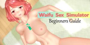 WSS (Waifu Sex Simulator) 3.1 Beginners Guide for Oculus Rift + Touch lewdfraggy vr porn game blog virtual reality cgi
